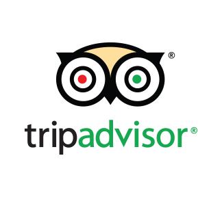 TripAdvisor Testimonials